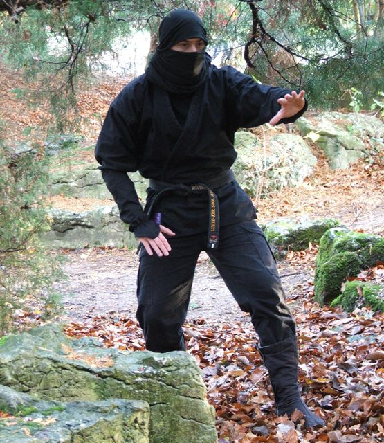 Becoming the Ninja